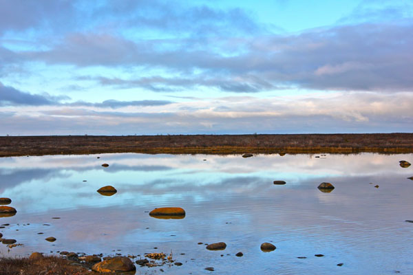 Hudson Bay, Churchill by Green Global Travel