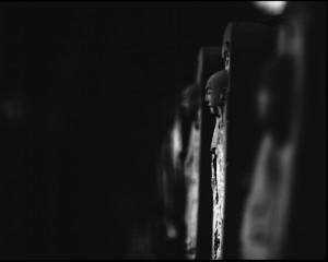 Jon Ellis©_IWTFY-4